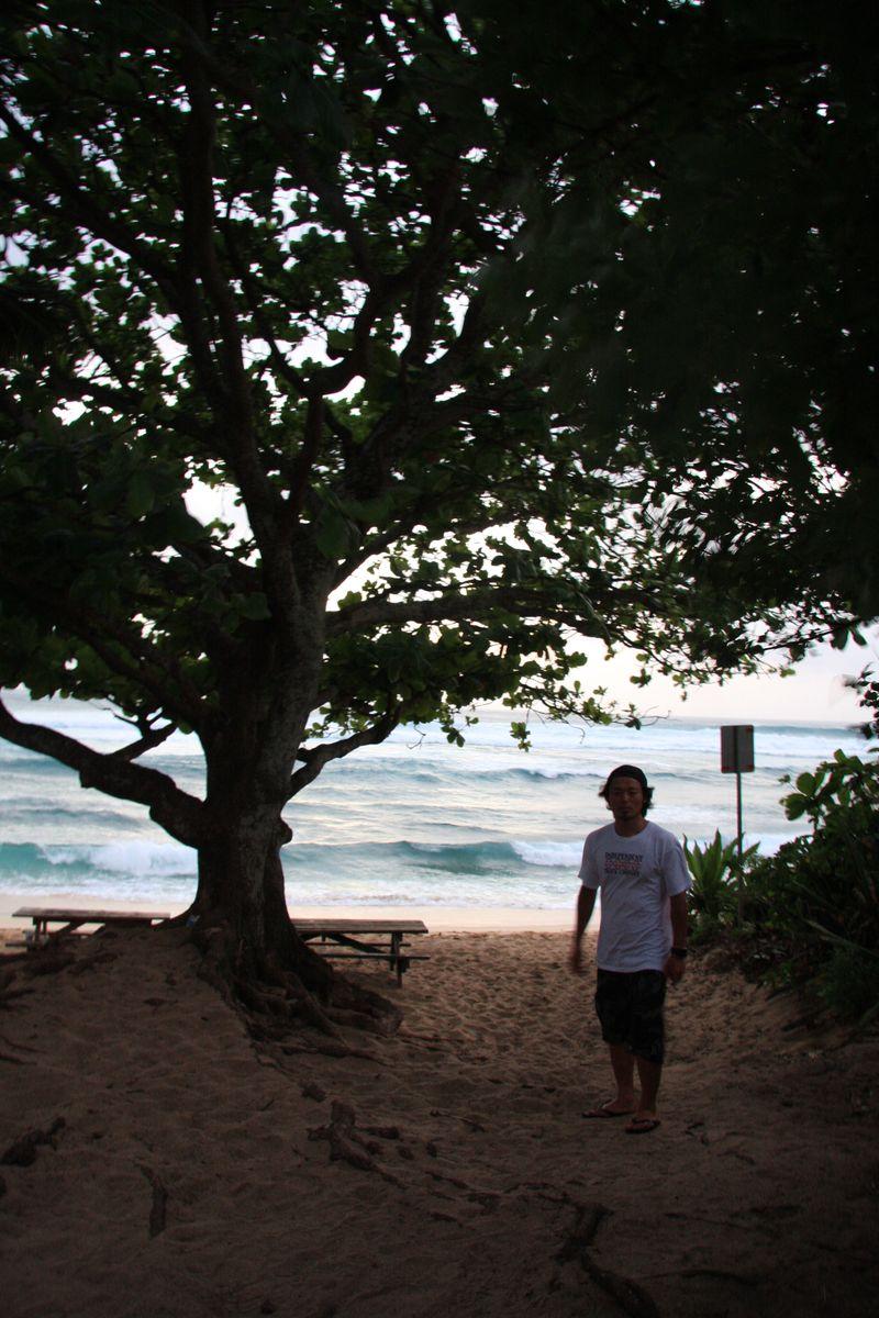 2010 hawaii 216